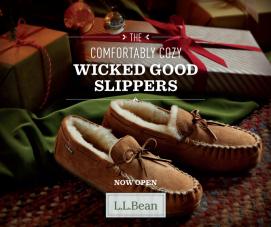 L.L. Bean ad - edited copy